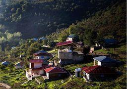 یک هشدار زیست محیطی در گیلان