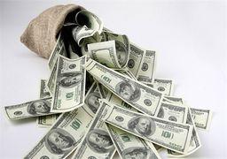 ٣٠ میلیارد دلار ارز خانگی در اختیار مردم است