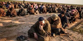 فرار صدها داعشی از زندان در پی عملیات نظامی ترکیه