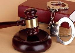تشکیل یک دادگاه با استفاده از تصاویر اینترنتی ! +عکس
