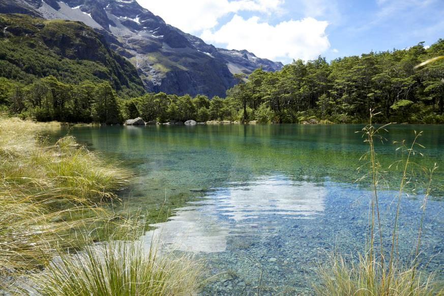 Slide 7 of 16: This lake on New Zealand's South Island is the clearest lake in the world, according to science. In 2011, scientists from the country's National Institute of Water and Atmospheric Research conducted a study and found that the clarity of the lake is surpassed only by very clear seawater. Also called Rotomairewhenau, the Blue Lake is located in Nelson Lakes National Parks. This body of water is actually fed by another glacial lake, Lake Constance—both are free of run-off debris, which keeps the water clean and very cold. Its purity also makes the lake sacred to the local indigenous people. These are the most breathtaking glaciers in the world.