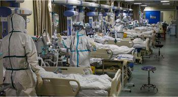 درمان کرونا در ایران کشف شد  + عکس